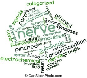 Nerve - Abstract word cloud for Nerve with related tags and...
