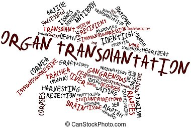 Abstract word cloud for Organ transplantation with related tags and terms