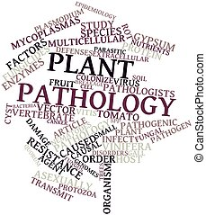 Plant pathology - Abstract word cloud for Plant pathology...