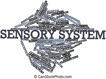 Sensory system - Abstract word cloud for Sensory system with...