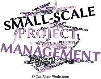 Small-scale project management