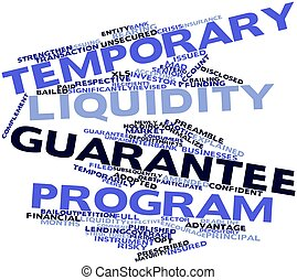 Temporary Liquidity Guarantee Program