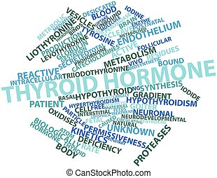 Thyroid hormone - Abstract word cloud for Thyroid hormone ...