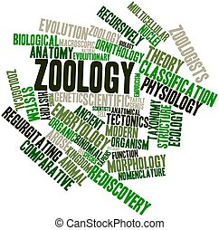 Abstract word cloud for Zoology with related tags and terms