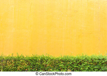 Abstract yellow cement wall texture background