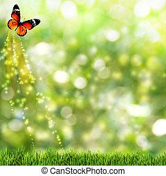 abstract, zomer, achtergronden, met, beauty, vlinder