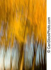 abstract/impressionist, gaj, wiąz