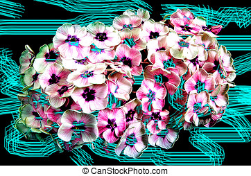Abstraction with Bouquet of white phlox