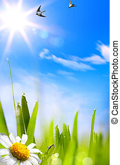 abstracts beautifu spring background