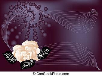 abstrakcyjny, tło, z, róża