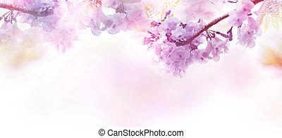 abstrakt, blommig, bakgrund, av, purpurfärgade blommor, med, mjuk, style.