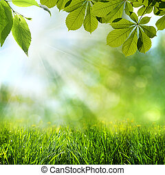 abstrakt, forår, og, sommer, baggrunde
