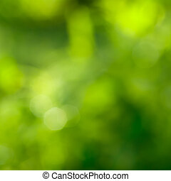 abstrakt, grøn baggrund, hos, naturlig, bokeh