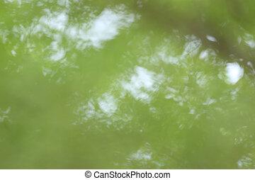 abstrakt, hintergrund, von, grün, heraus, von, fokus.