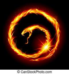 abstrakt, spirale, schlange