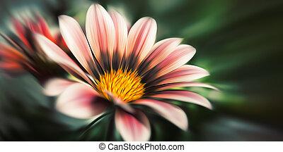 abstrakt, suddig, blomningen