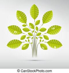abstrakt, vektor, baum, busch, mit, grüne blätter, und,...