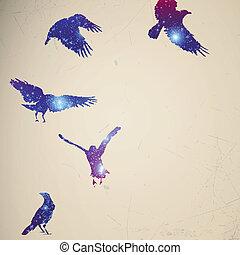 abstrakt, vektor, fåglar, bakgrund