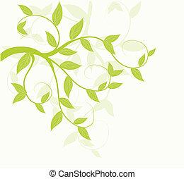 abstrakt, vektor, grönt lämnar, blommig, bakgrund.