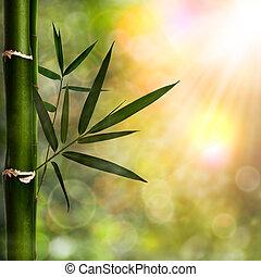 abstraktní, blbeček, grafické pozadí, s, bambus, listoví