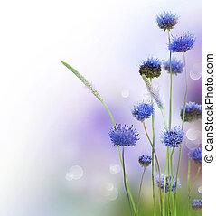 abstraktní, květiny, hraničit, design