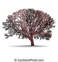 abstratos, árvore, fundo, natureza