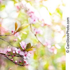 abstratos, floral, primavera, árvore, fundo