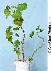 abstratos, geranium, fundo, textured
