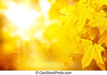 abstratos, laranja, outono, fundo