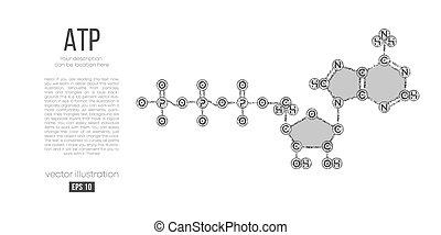 abstratos, molécula, holographic, branca, formula., ...