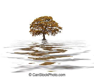 abstratos, outono, árvore carvalho