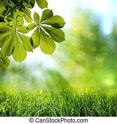 abstratos, primavera, e, verão, fundos