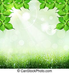 abstratos, primavera, e, verão, fundos, com, foliage, forma