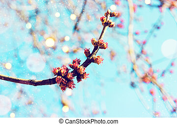 abstratos, primavera, fundo