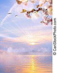 abstratos, primavera, luz, fundo