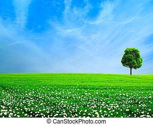 abstratos, rural, paisagem., prado verde, sob, a, céus azuis