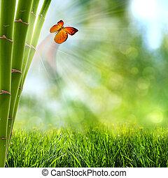 abstratos, verão, fundos, com, floresta bambu, e, borboleta