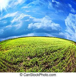abstratos, verão, paisagem, sob, a, céus azuis