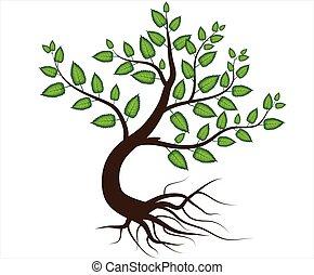 abstratos, vetorial, árvore, com, raiz