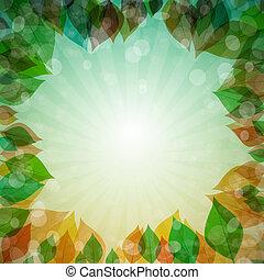 abstratos, vetorial, primavera, verão, outono, inverno, fundo, com, folhas