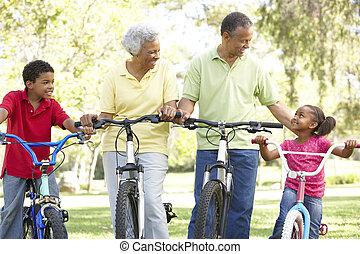 abuelos, bicicletas, parque, nietos, equitación