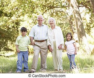abuelos, parque, nietos