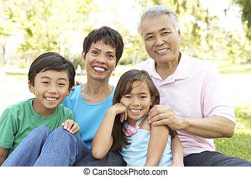 abuelos, parque, nietos, retrato