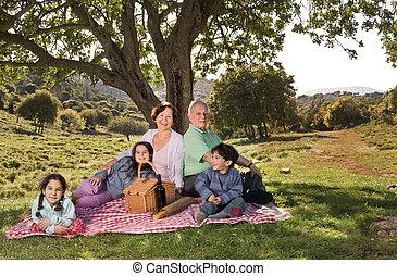 abuelos, picnic, nieto