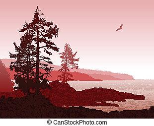 ac, isla, costa, vancouver, oeste, paisaje