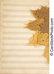 The old music books which are autumn leaves of maple