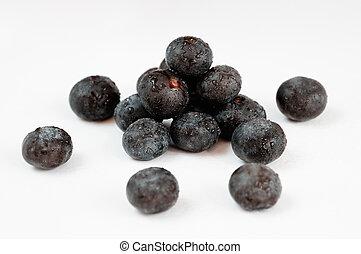 acai, fruit, besjes