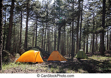 acampamento