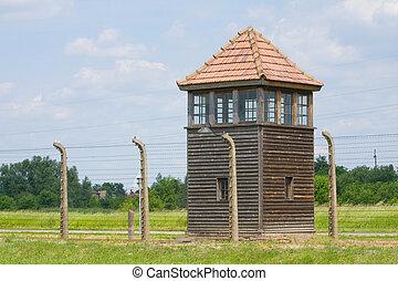 acampamento, fascista, birkenau, , exterminação, auschitz