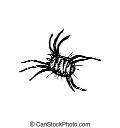 Acarus Icon - The black silhouette of dangerous Acarus...